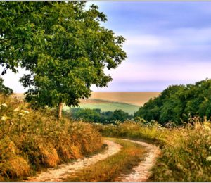 Chemin de randonnée en Forterre – ©Daniel Salem