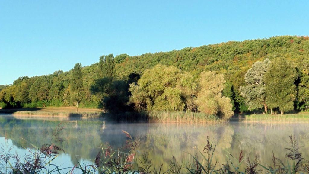 Bord de l'étang de Cornoy à Andryes