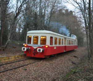 Train Touristique de Puisaye (3)