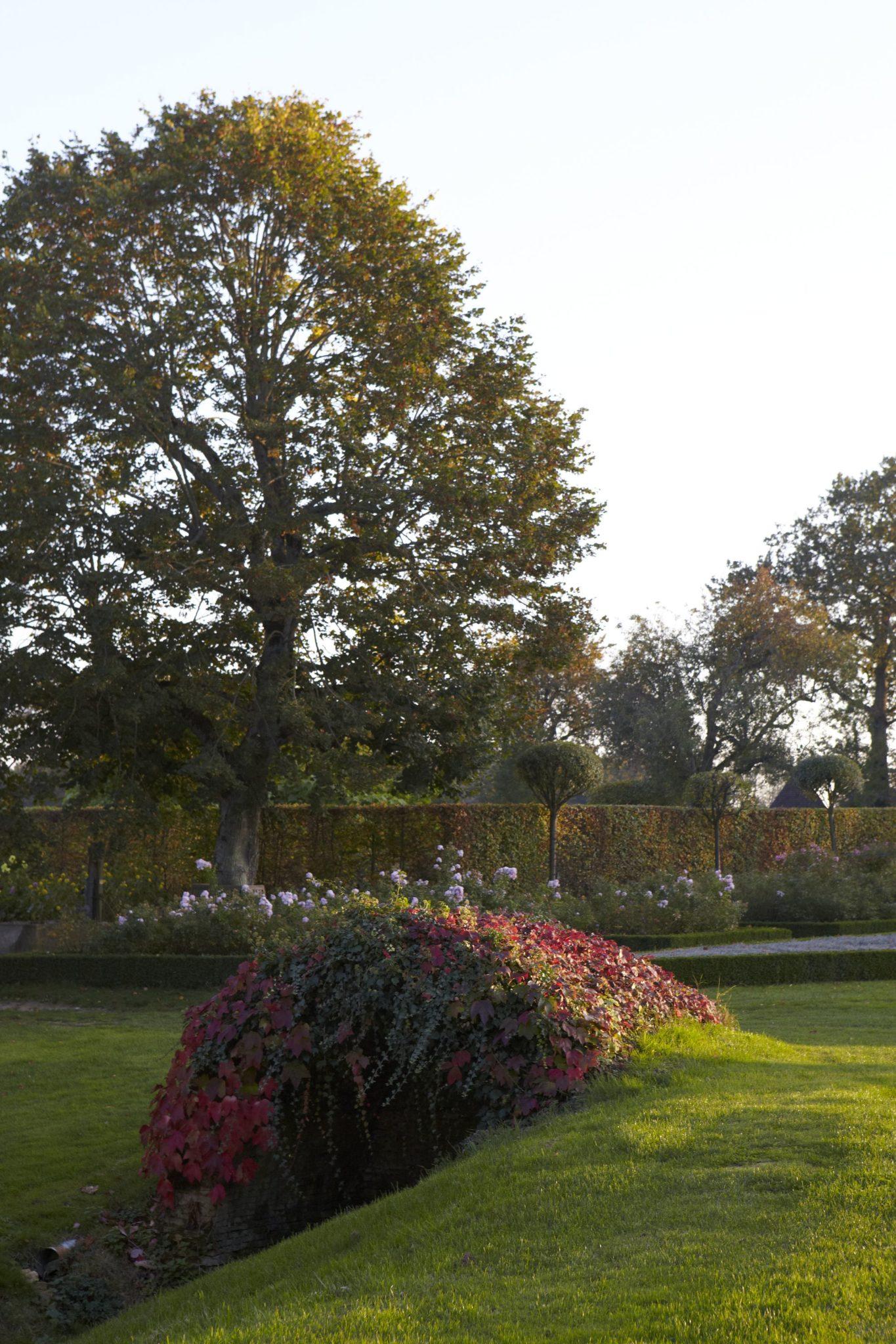 Le jardin de la borde leugny en puisaye dans l 39 yonne for Borde para jardin