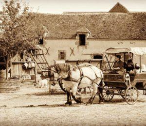 Une ambiance old school à la ferme du château – ©alecs4284