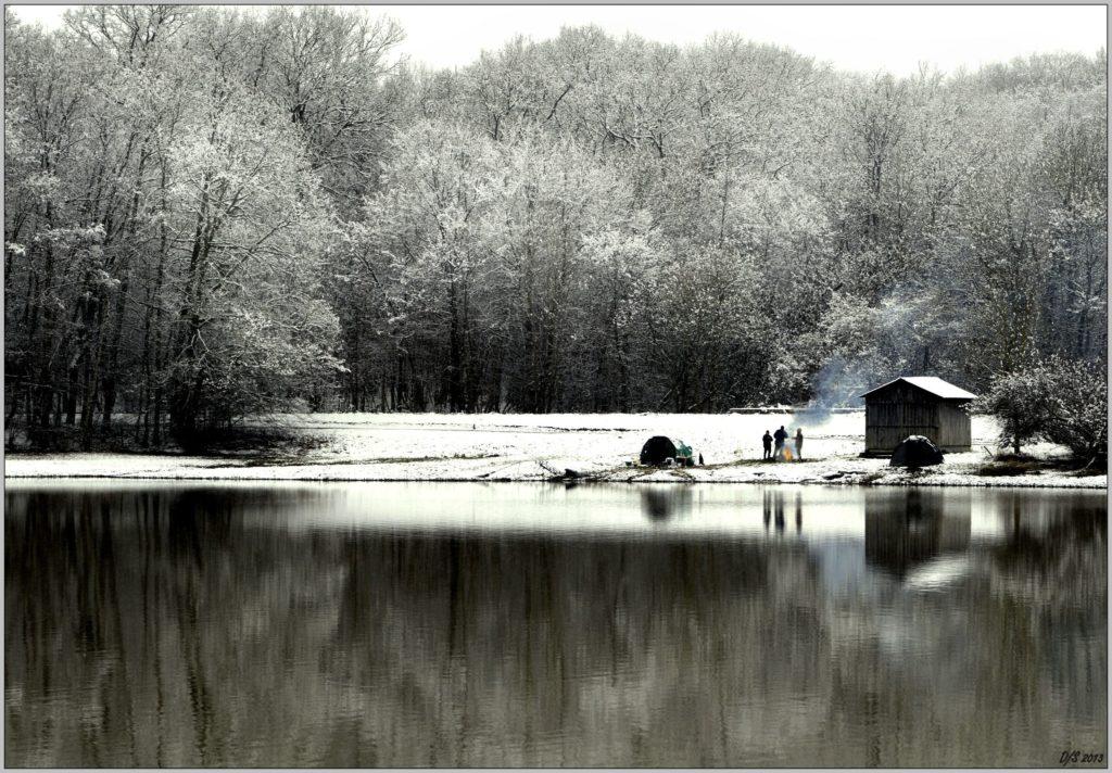 Pêche en Hiver à l'étang de Moutiers en Puisaye