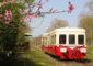 Le train touristique de Puisaye-Forterre –