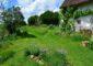 Gites-meubles-jardin-des-paillots-charny-orée-de-puisaye (5)
