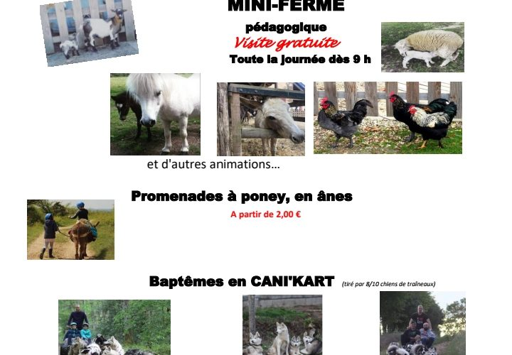 Foire-agricole-ouanne (2)