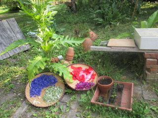 Le cabaret des oiseaux-toucy-bien-être-plantes-soins