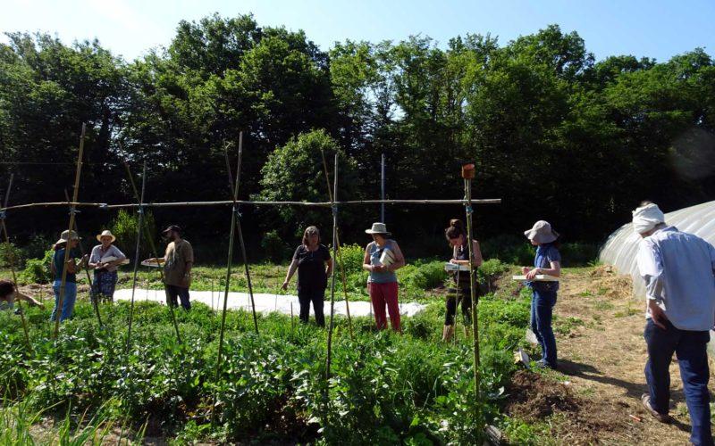 Jardin ressource du Parc – Ateliers-cuisine-puisaye