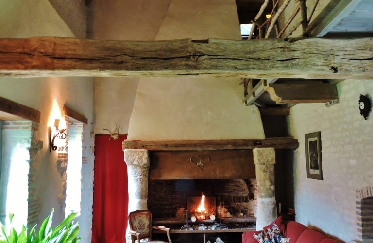 Chambresdhotes-lestoursdarbonne-chassy (7)