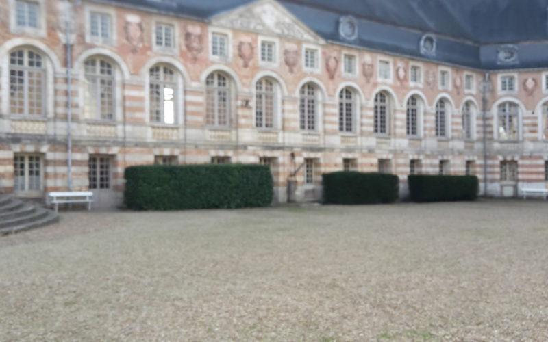 Classe-verte-chateau-de-saint-fargeau-puisaye (3)