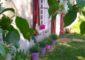 Chambres-hotes-val-du-papillon-treigny-perreuse (2)