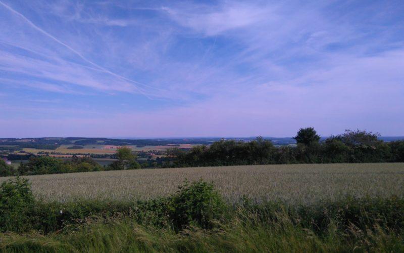 Chambres-hotes-val-du-papillon-treigny-perreuse (5)