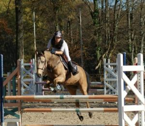 COMPETITIONS EQUESTRES AUX GRILLES – Puisaye-Forterre – Yonne – Bourgogne