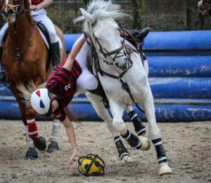 MATCHES DE HORSE BALL AUX GRILLES ! – Puisaye-Forterre – Yonne – Bourgogne