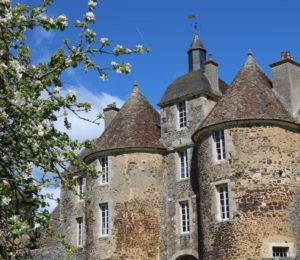 Château de Ratilly 5