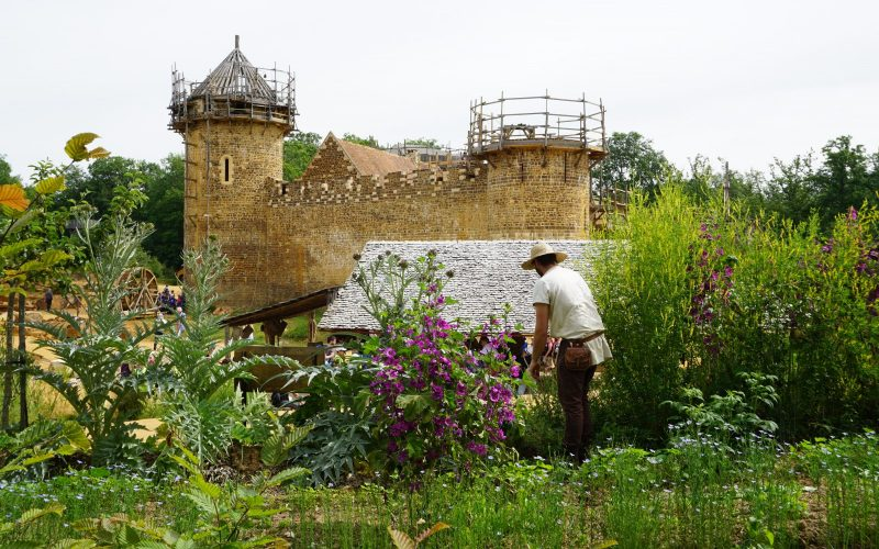 Guedelon, le jardinier avec la courtine ouest en arrière plan