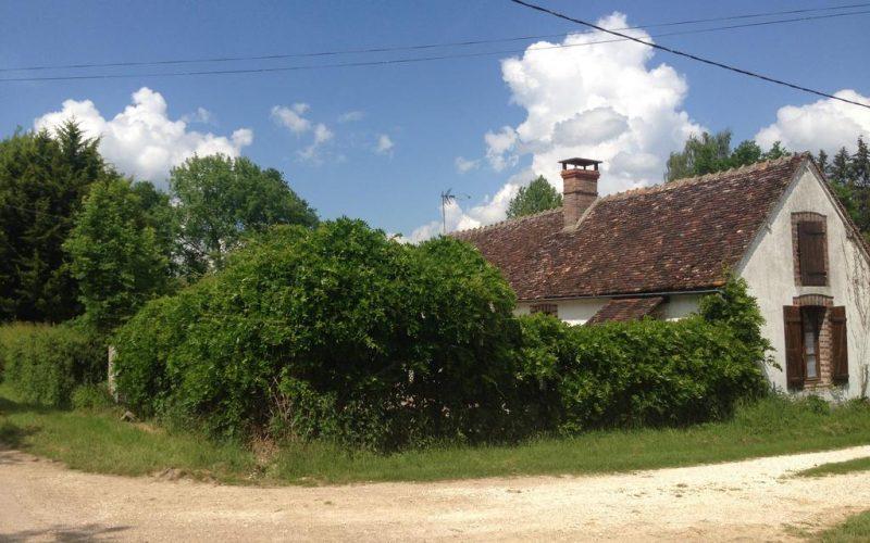 Gite-longere-bois-de-bailly-saint-fargeau (1)