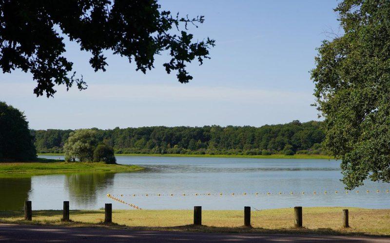 Lac-du-bourdon-saint-fargeau (1)