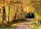 Sentier de randonné sur les pas de Colette